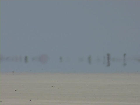 A mirage of water is seen in the desert Stock Video Footage