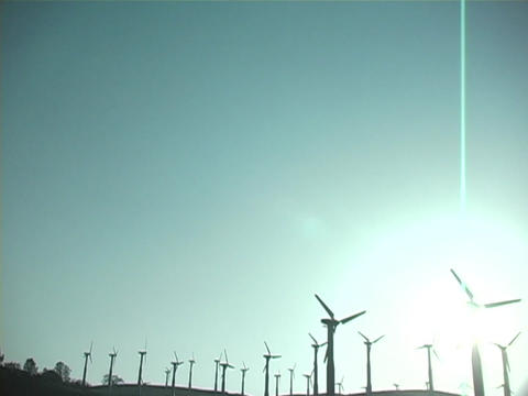Windmills turn together in a large field Stock Video Footage