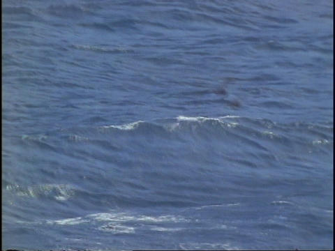 A small fishing boat moves through the ocean Stock Video Footage