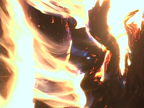 Logs burn in a campfire Stock Video Footage