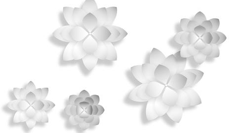 Abstract 3d background, white flowers Stock Video Footage
