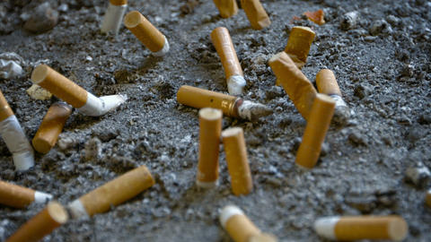 Cigarette Butts Extinguished in Sand Live Action