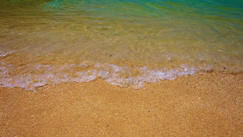 Gentle Ocean Waves Washing over a Tropical Beach Live Action