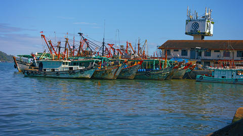 Fishing Boats Tied to a Pier in Kota Kinabalu. Malaysia Footage