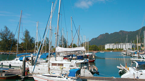 Many luxury sailing boats docked in Langkawi Malaysia's harbor Live Action