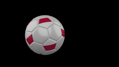 EURO Soccer Balls Fly