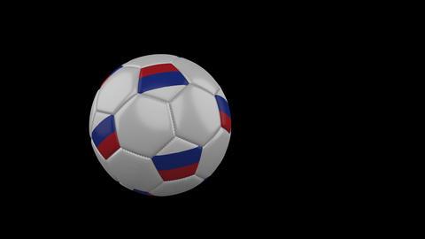 EURO Soccer Balls Fly 1