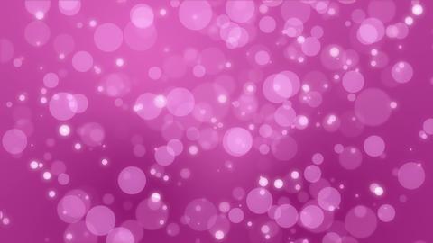 Bokeh lights dark pink background Animation