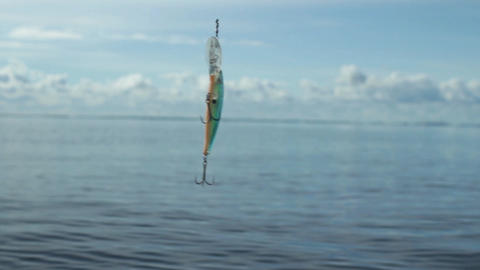 Fishing lure wobbler with hooks Footage