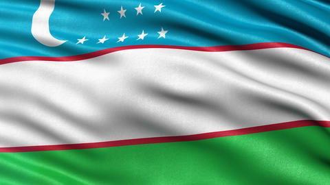 Uzbekistan flag seamless loop Animation