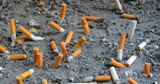 Dozens of extinguished cigarette butts of varying brands. discarded in a designa Live Action