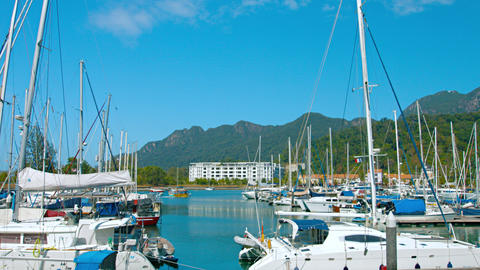Many luxury. fiberglass sailboats docked at Langkawi's peaceful harbor Live Action