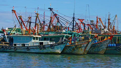 Big wooden fishing boats group stand in a sea port Footage