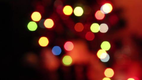 Christmas Tree Lights Bokeh Live Action