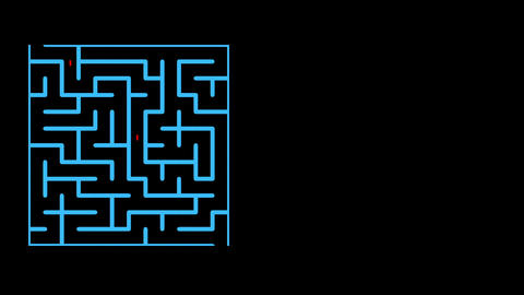 animation of Maze With possible Solution Animation