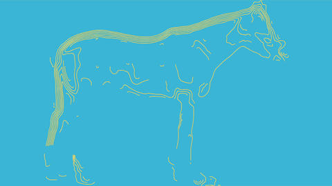 Topographic Contour Animation of horse Animation