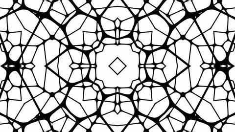 Mov213 Kaleidoscope Line Loop 2