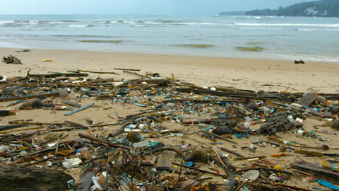 Tropical Beach Covered in Litter and Debris. 4k video Footage