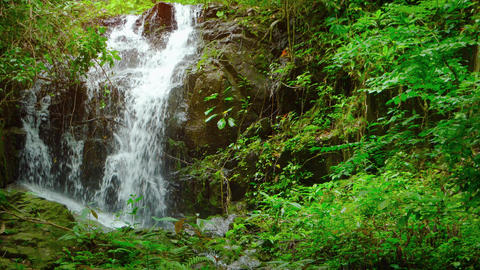 Natural Waterfall Tumbles over Rocks in a Tropical Rainforest. with Sound Footage