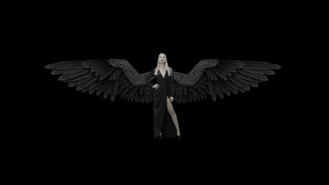 Beautiful girl in a dress with black wings on a alpha channel Live Action
