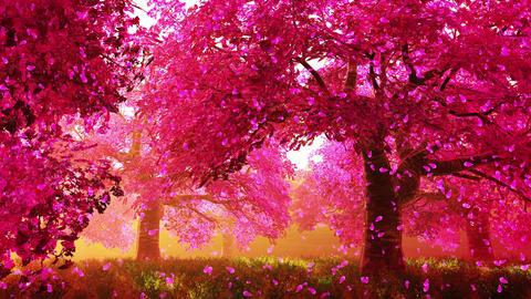 4K Cherry Blossoms Magic Garden Seamless Looping Animation Animation