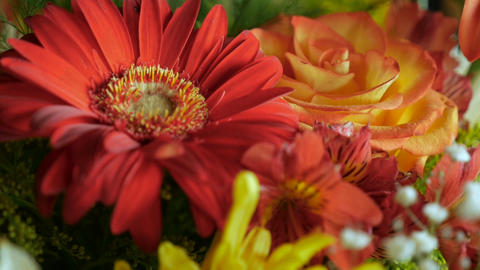 Push in close up of an assortment of a bouquet of colorful flowers Footage