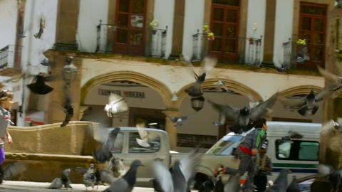 PATZCUARO, MEXICO - CIRCA AUGUST 2016 - children chase a flock of pigeons in a p Footage