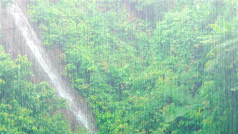 Waterfall Streaming down Hillside in Torrential Rain. with Sound Footage
