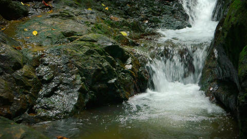 Natural Waterfall Pours Peacefully into a Tropical Pool. with Sound Footage