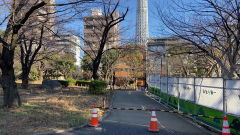 Sumida park028 Live Action