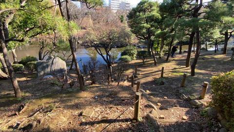 Sumida park017 Live Action