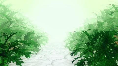Plant in Garden Animation