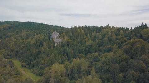 Impressive drone shot of the mountain hills in forest. Autumn. Aerial view Live Action