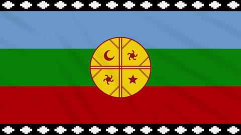 Mapuche flag waving cloth, ideal for background, loop Animation