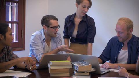A multi ethnic group of young business professionals work together on their lapt Footage