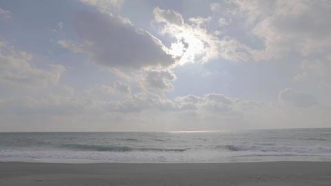 Sea daytime2 ライブ動画