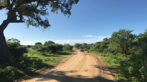 Yala, Sri Lanka, road and horizon with clouds Live Action