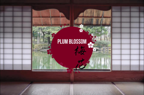 7 Japan Titles After Effects Template
