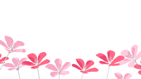 Flower Blooming Animation with Alpha Channel Animation