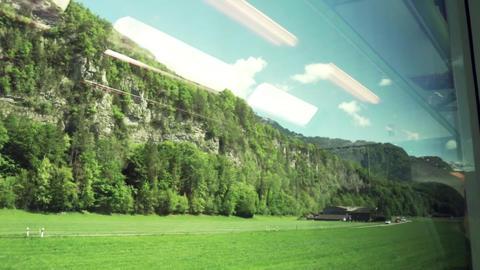Train trip through nature Live Action