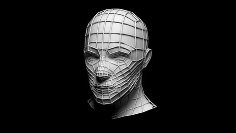 Wireframe Head, male, 4K, Loop with Alpha Animation