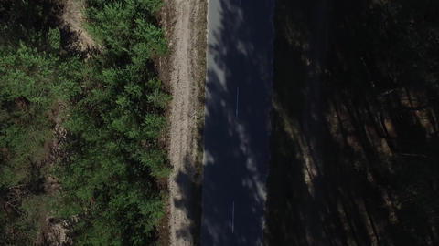 Copter view car riding on road at forest. Aerial view drone flying over road Live Action
