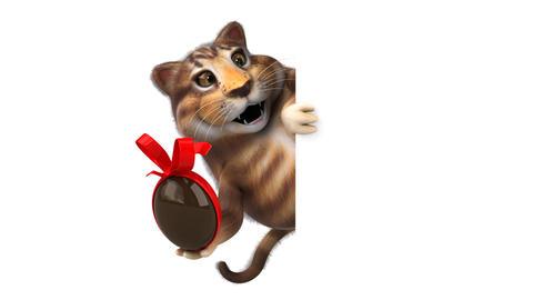 Fun cat - 3D Animation Animation