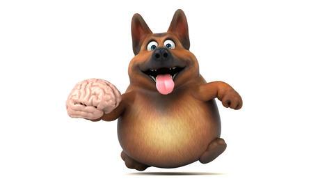 Fun german shepher dog - 3D Animation Animation