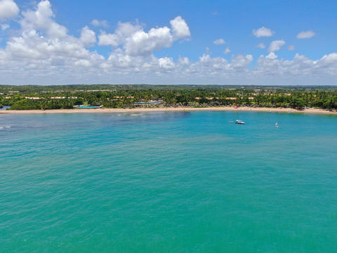 Aerial view of tropical white sand beach, palm trees and turquoise clear sea Photo