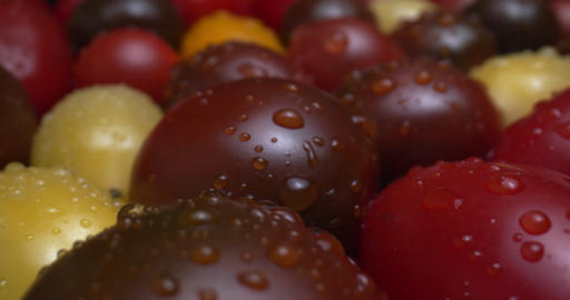 Medley of heirloom grape cherry tomatoes filmed with a macro probe lens Live Action