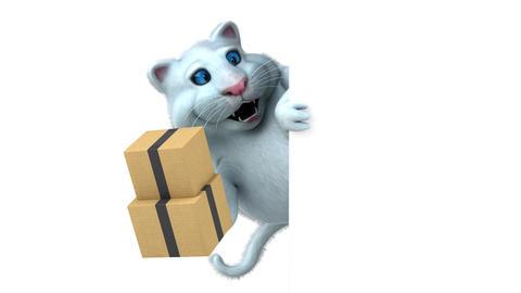 Fun cat - 3D Animation Videos animados