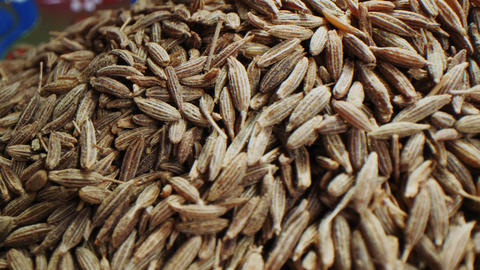 aromatic jeera seeds in bowl on light background macro Live Action