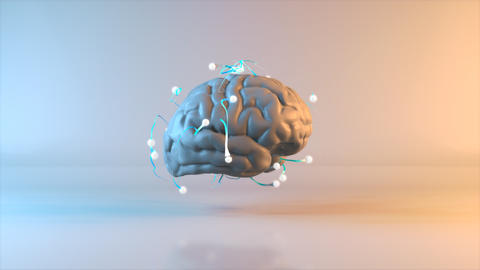 Brain - 3D Animation Animation