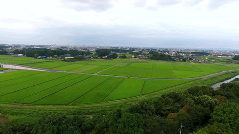 Aerial View 0